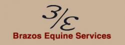 Brazos Equine Services